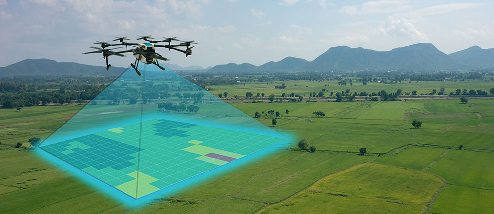 agriculture drone inspection
